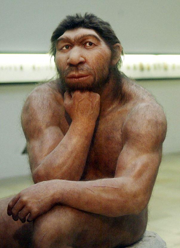 uchyonyx-antropologov