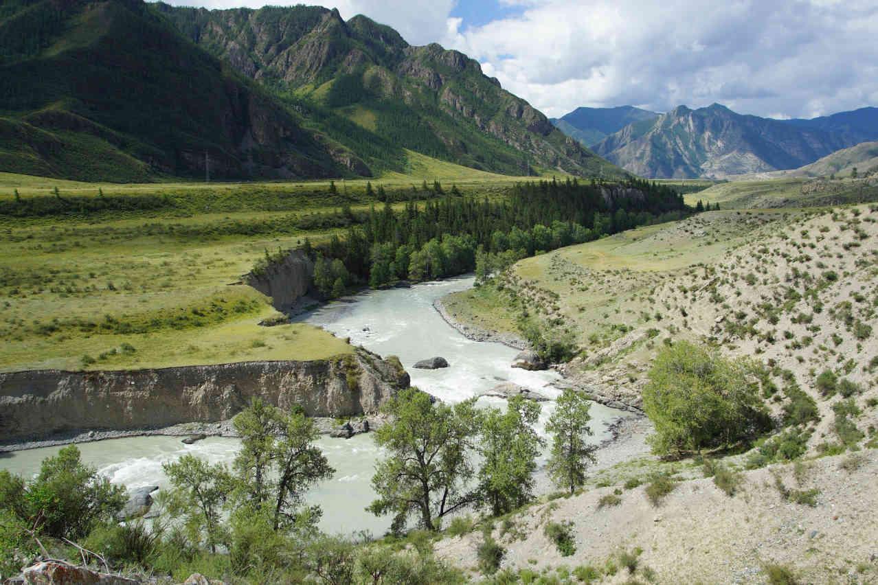 Горный Алтай - Берег реки