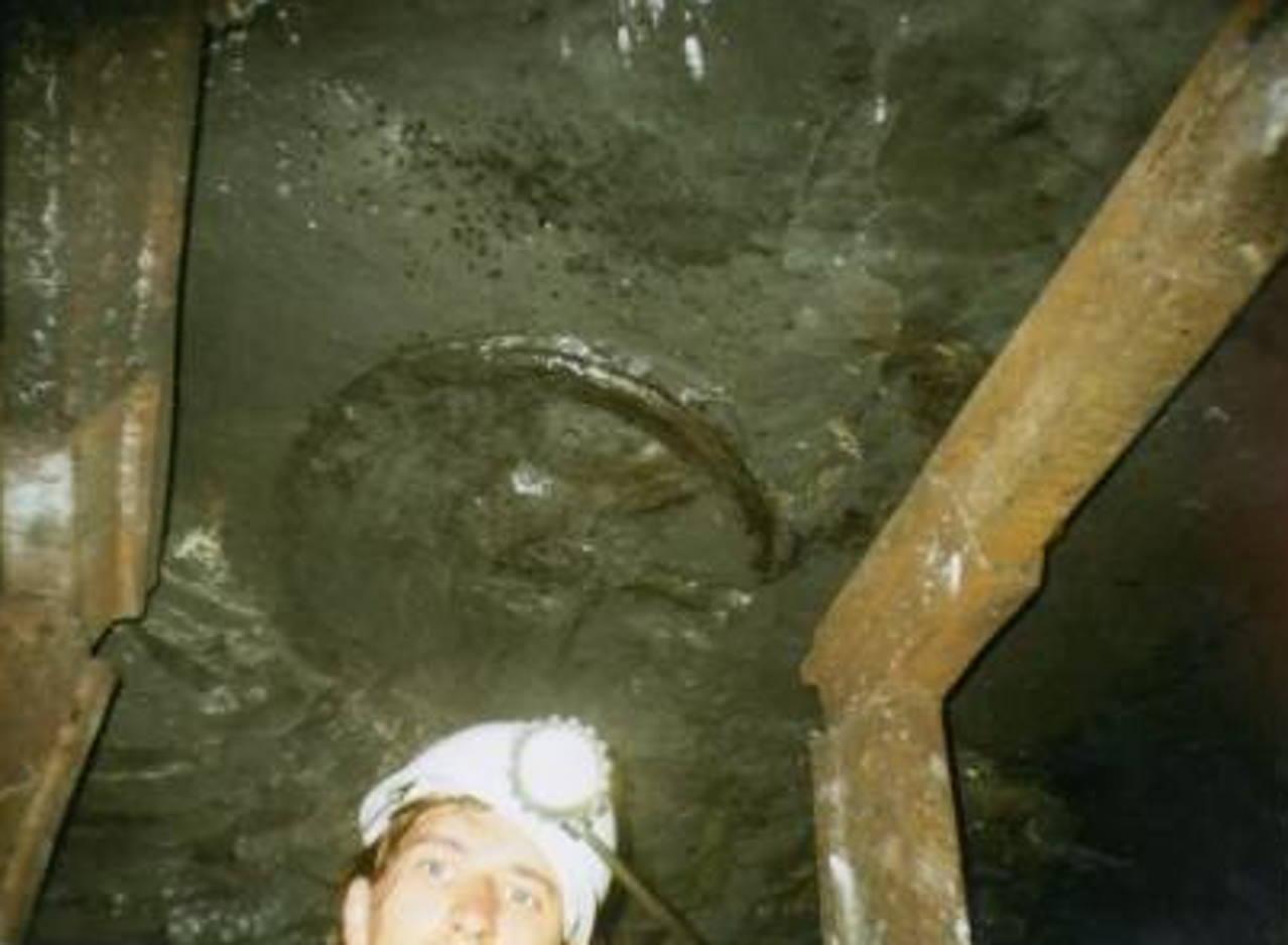 Колесо возрастом 300 млн лет