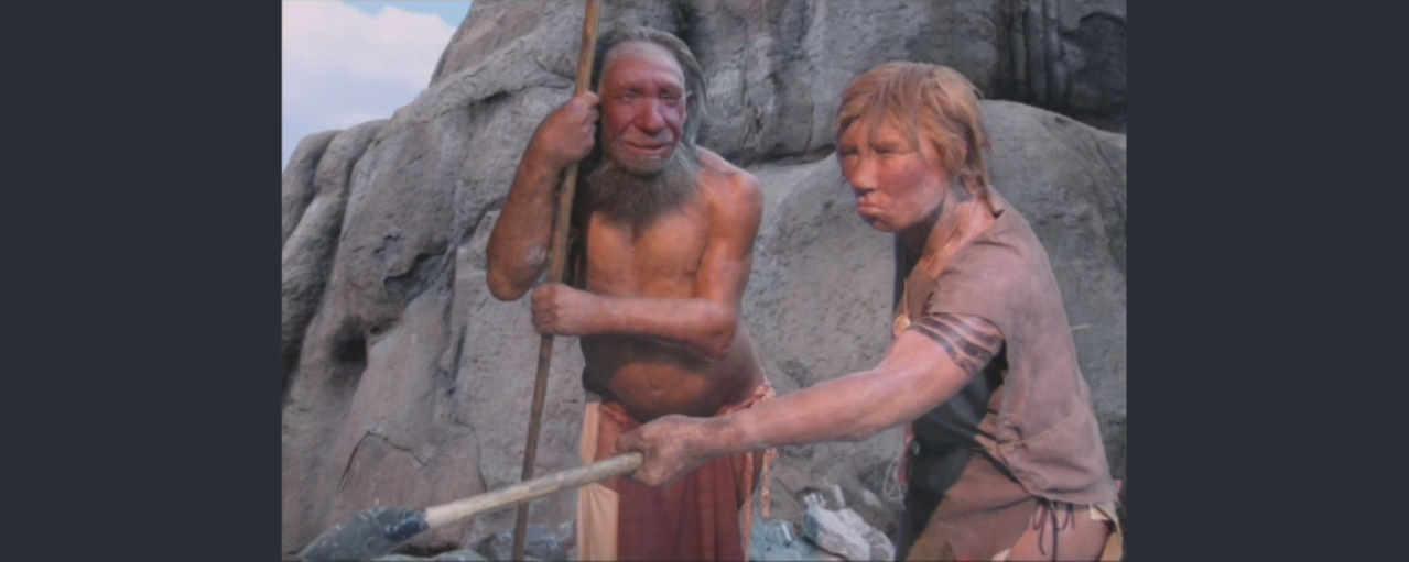 Человек неандертальский (Homo sapiens neanderthalensis)