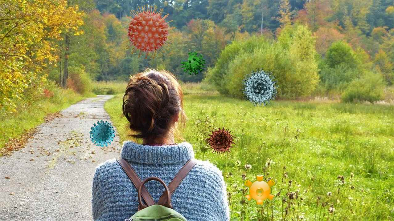 Вирусы в окружающей среде