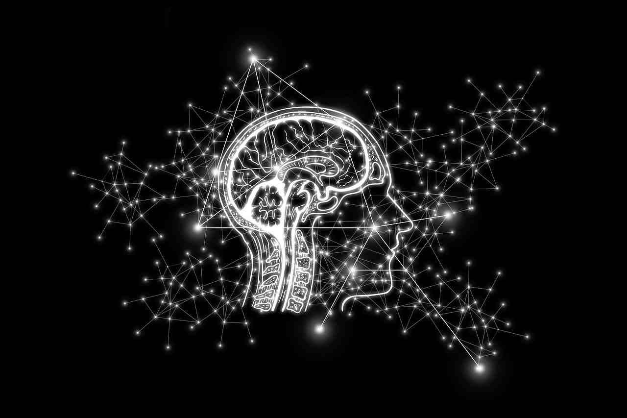 Учеными выявлено сходство между Вселенной и головным мозгом человека
